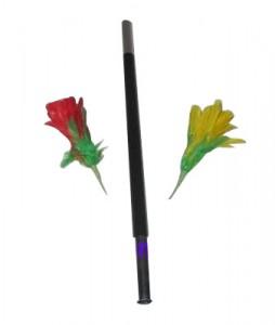 Zauberstab zaubert Blumen - Blumenzauber